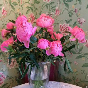 Beaufort House Akaroa Flowers
