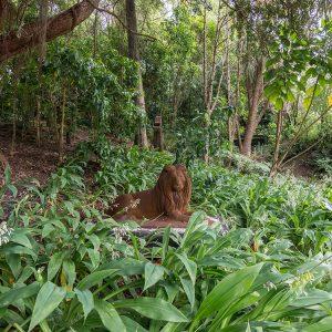 Beaufort House Akaroa Gardens Lion Sculpture