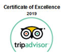 icon trip advisor